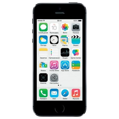 Смартфон Apple iPhone 5S 16 Гб серый (ЕСТ)